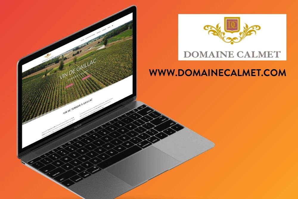 site-internet-professionnel-albi-visibilite-web